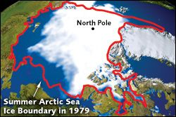 Arctic Sea Ice Drops to a New Record Low